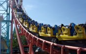 photos of Carolina Cobra roller coaster in Carowinds theme park