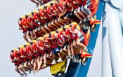 photos of Griffon roller coaster in Busch Gardens Williamsburg theme park