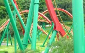 fotos de la montaña rusa Insane Speed en el parque temático Janfusun Fanyworld