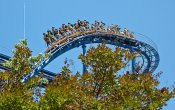photos of Shockwave roller coaster in Kings Dominion theme park