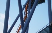 photos of Talon roller coaster in Dorney Park & Wildwater Kingdom theme park