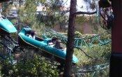 Timberline Twister